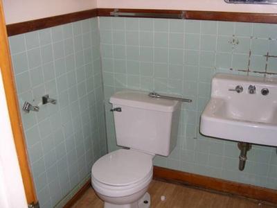 Bathroom Remodel Bluem Toilet